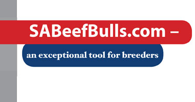 SABeefBulls.com an exceptional tool