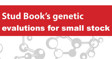 Stud Book's genetic evaluations for small stock