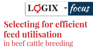 Selecting for efficient feed utilisation